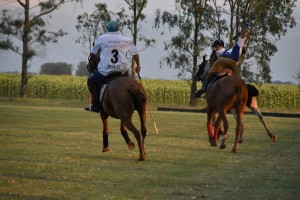 fun polo in the pampas