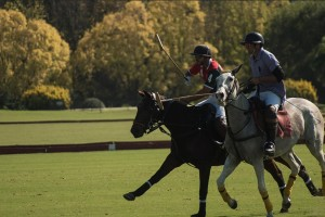 polo at its best!!
